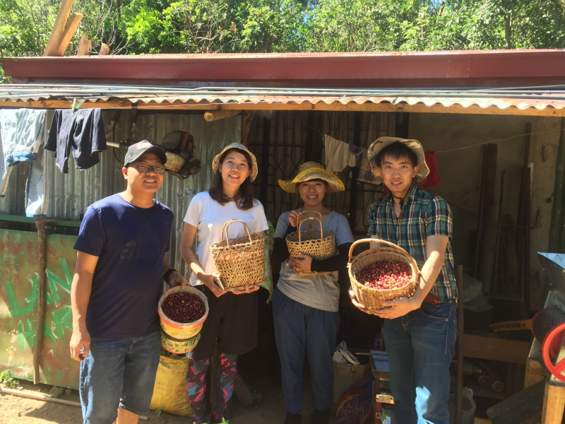 Coffee Harvest Tour for students of English academies in Baguio City